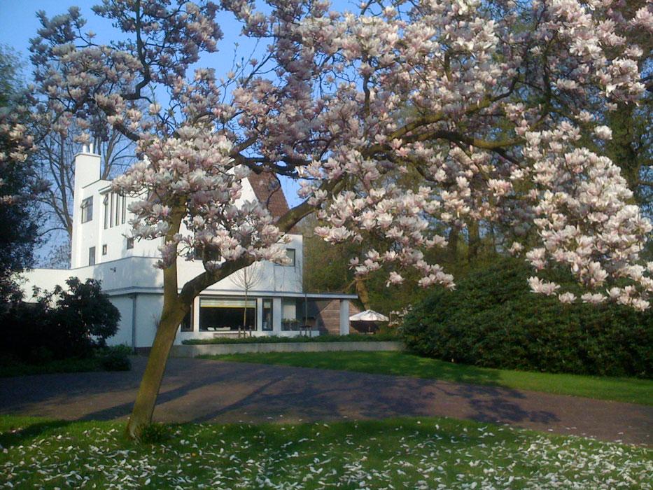 burobulder_renovatie-inrichting-haren_magnolia